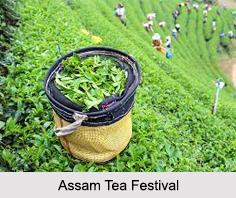 Assam Tea Festival, Assam
