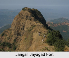 Jangali Jayagad Fort, Maharashtra