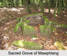 Mawphlang, Meghalaya