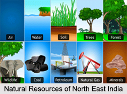 Natural Resources of North East India