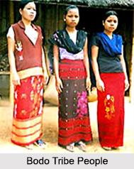 Bodo Language, Indian Tribal Language