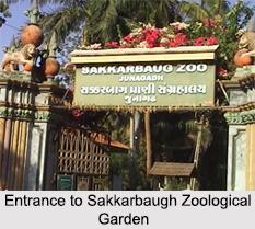 Sakkarbaug Zoological Garden, Junagadh, Gujarat