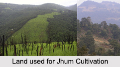 Jhum Cultivation, North East India