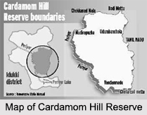 Cardamom Hills, Kerala