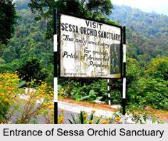 Sessa Orchid Sanctuary, Arunachal Pradesh