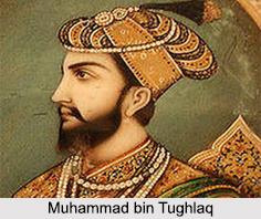 Muhammad bin Tughlaq, Delhi Sultanate