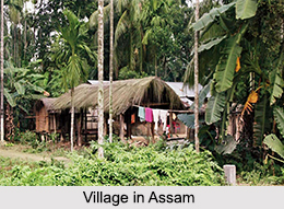 Villages of Assam, Indian Village