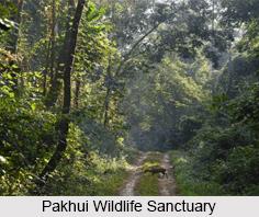 Pakhui Wildlife Sanctuary, Arunachal Pradesh
