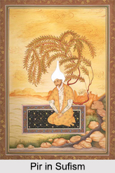 Role of Pir in Sufism, Principles of Sufism