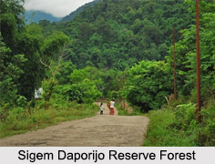 Sigem Daporijo Reserve Forest, Arunachal Pradesh