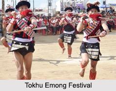 Tokhu Emong Festival, Nagaland