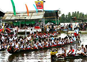 Summer Festival - Boat Races