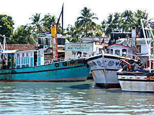 Fishing Industry in India