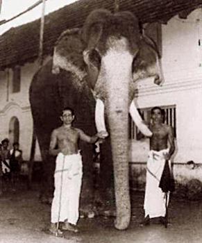 Guruvayoor Keshavan