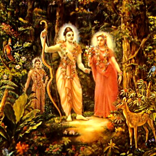 Maricha in the disguise of a golden deer moved Rama