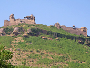 massive Fort