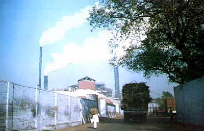 Daurala Sugar Works - Daurala, Meerut, Uttar Pradesh
