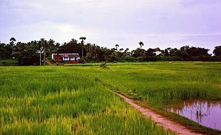 Kaveripakkam, Vellore, Tamil Nadu