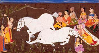 Pashuyajna - Ashvamedha Yajna