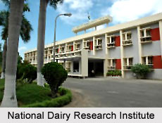 National Dairy Research Institute, Karnal, Haryana