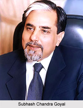 Subhash Chandra Goyal, Indian Businessman
