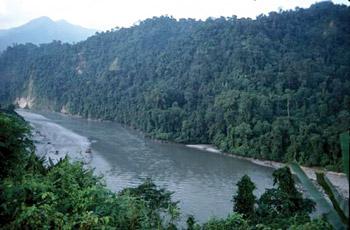 Brahmaputra River at Assam