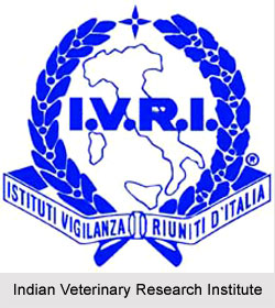 Indian Veterinary Research Institute, Uttar Pradesh
