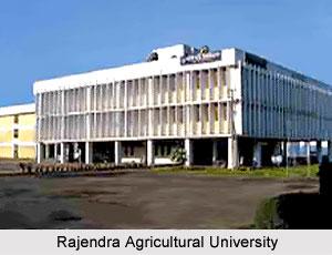 Rajendra Agricultural University, Samastipur, Bihar