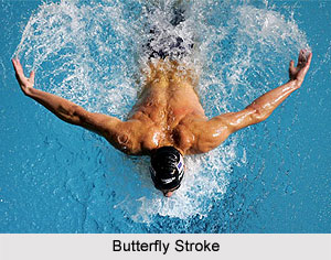 Types of Strokes in Swimming