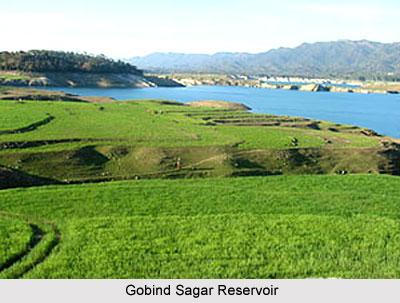 Gobind Sagar, Reservoir, Himachal Pradesh