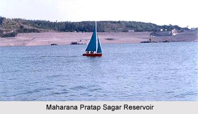 Maharana Pratap Sagar Reservoir, Himachal Pradesh
