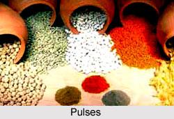 Pulses, Indian Food Crop