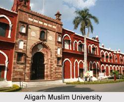 Career of Syed Ahmed Khan - Aligarh Muslim University