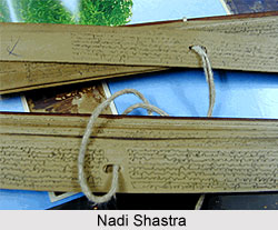 Reading in Nadi Shastra