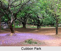 Cubbon Park, Karnataka