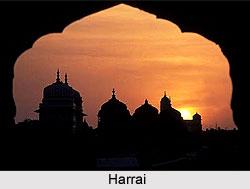 Harrai ,Madhya Pradesh