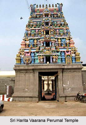 Sri Harita Vaarana Perumal Temple, Nazarethpettai, South India
