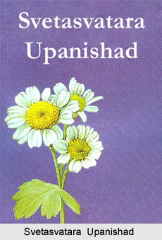 Sixth Chapter of Svetasvatara Upanishad