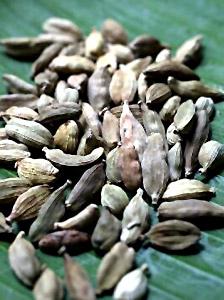 Betel chewing cardamon