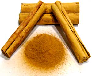human resources janu crush cinnamon word meaning i