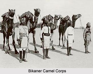 Bikaner Camel Corps, Presidency Armies in British India