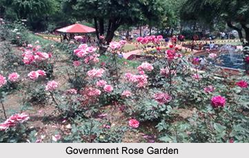 Government Rose Garden Tamil Nadu,