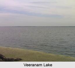 Veeranam Lake, Tamil Nadu