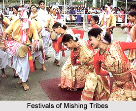 Festivals of Mishing Tribes