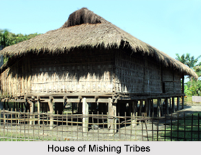 Society of Mishing Tribes