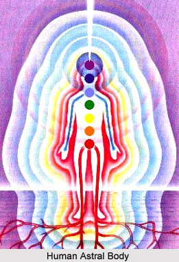 Magnetism in the other Astral Bodies