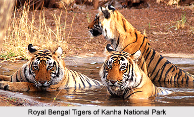 Tourism of Balaghat District