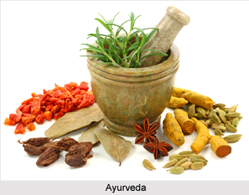 Traditional Indian Medicine during Vedic Period