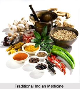 Traditional Indian Medicine in Ancient Period