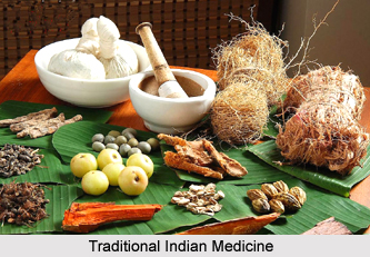 Traditional Indian Medicine in Later Modern Period
